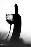 Тень бутылки и стекла вина Стоковое Изображение RF