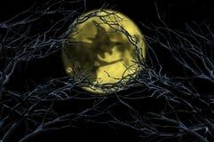 Тень ведьмы над луной на хеллоуине Стоковая Фотография