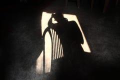 Тень депрессии Стоковое Фото