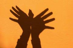 Тень животного середины символа руки любит птица на оранжевом bac стены стоковые изображения rf