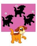 тень игры 74 собак Стоковые Фотографии RF