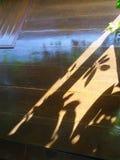 Тень и серовато-коричневый цвет дерева освещают на деревянных окне и стене Стоковая Фотография RF