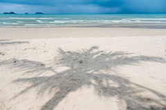 Тень кокосовой пальмы на пляже Phrao, Koh Chang, Trat, Таиланде Стоковое Изображение RF