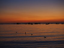 Тень моря захода солнца предпосылки Стоковое фото RF