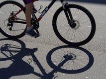 Тень на майне велосипеда Стоковое Фото