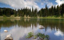 тень озера Стоковые Изображения