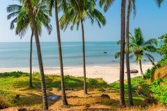 Тень пальм около моря Стоковые Фото