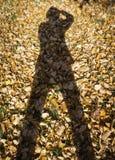 Тень персоны на предпосылке падения выходит Стоковое Изображение RF