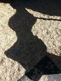 Тень скольжения Стоковые Изображения