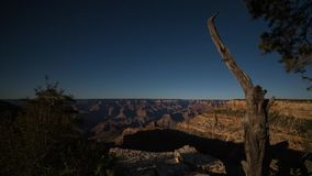 Тень лунных светов в гранд-каньоне сток-видео