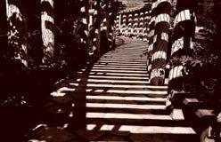 тень corridorof Стоковая Фотография