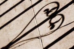 тень loveheart сада Стоковые Изображения