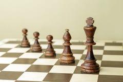 Теория развития на примере chessmen Стоковое Фото