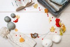 Теплые серые и голубые свитеры Связанная шляпа в белизне Путать белой и серой пряжи Вязать иглы Красная зола горы Осень выкрикива стоковая фотография
