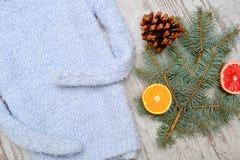 Теплый голубой свитер Елевый sprig и половины апельсина Fashionabl Стоковое Изображение RF