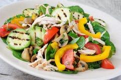 Теплый салат из курицы с овощами Стоковая Фотография RF