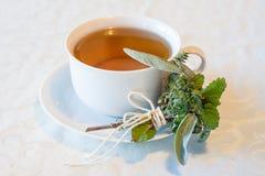 Теплый травяной чай на день зим Стоковые Фотографии RF