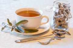 Теплый травяной чай на день зим Стоковая Фотография