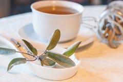 Теплый травяной чай на день зим Стоковые Изображения