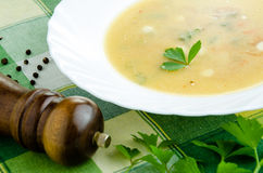 Теплый vegetable густой суп Стоковое Фото