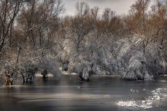 Тепло зимы Стоковое Фото