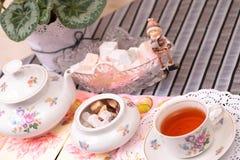 Теплые чашка чаю и помадки стоковые изображения rf