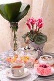Теплые чашка чаю и помадки стоковые фотографии rf