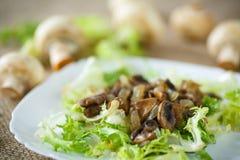 Теплый салат с грибами Стоковые Изображения RF