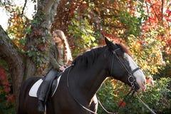 Терапия с лошадями - терапия гиппопотама Стоковые Изображения