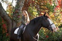 Терапия с лошадями - терапия гиппопотама Стоковые Фотографии RF