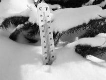 Термометр улицы с температурой Градуса цельсия и Градуса Фаренгейта в снеге рядом с молодой сосной стоковые фотографии rf