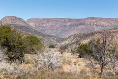 Терновый горный вид - ландшафт Cradock Стоковая Фотография
