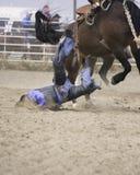 Терпеть неудачу Bronc седловины Стоковые Фотографии RF