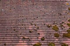 Терракота крыла крышу черепицей стоковое изображение rf