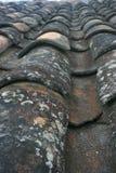 Терракотовые черепицы постарели и несенный с лишайником на плитках стоковые изображения