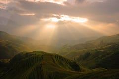 терраса восходов солнца Стоковые Фотографии RF