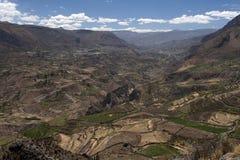 терраса каньона Стоковые Фотографии RF