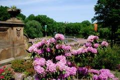 терраса парка nyc bethesda центральная Стоковая Фотография