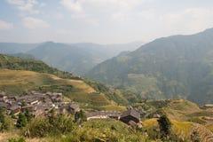 терраса риса поля Стоковые Фотографии RF