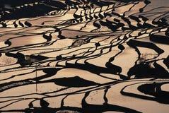 Терраса стенда стоковое изображение
