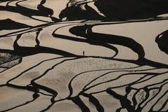Терраса стенда стоковая фотография rf