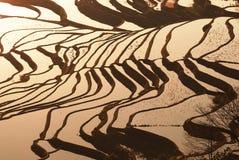 Терраса стенда стоковое фото rf