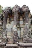 Терраса слонов Стоковая Фотография
