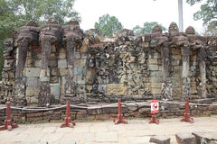 Терраса слонов Стоковое Фото