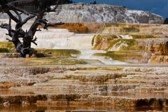 терраса minerva стоковая фотография rf