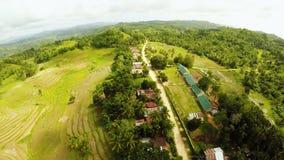Террасное поле риса в острове Bohol philippines Красивый филиппинец природы Виды с воздуха видеоматериал