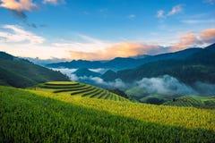 Террасные filelds риса Стоковые Изображения