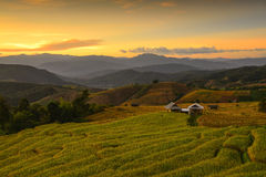 Террасный рис Mae Chaem, Чиангмай, Таиланд Стоковые Фото