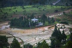 Террасы окружают спрятанный висок, Goemba, Бутан стоковое фото rf