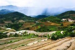 Террасы риса в Вьетнаме Стоковая Фотография